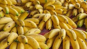 Pilhas da banana para a venda Foto de Stock