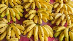 Pilhas da banana para a venda Imagens de Stock Royalty Free