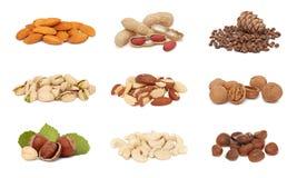 Pilhas da coleção nuts Imagens de Stock