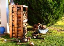 Pilhas da madeira na frente de uma árvore de abeto no jardim Carrinho de mão completamente da madeira imagem de stock