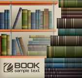 Pilhas de livro na prateleira Fotografia de Stock