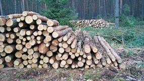 Pilhas de madeira Imagem de Stock Royalty Free