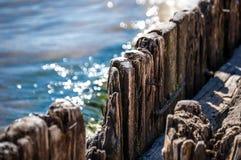 Pilhas de madeira na água Fotografia de Stock Royalty Free