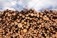 Pilhas de madeiras fotos de stock