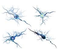 Pilhas de nervo isoladas no fundo branco ilustração stock