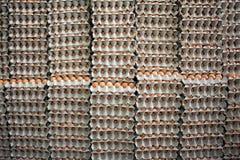 Pilhas de ovos marrons Foto de Stock Royalty Free