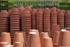 Pilhas de potenciômetros de flor Imagem de Stock