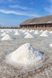 Pilhas de sal dentro Imagem de Stock