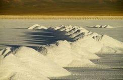 Pilhas de sal em Salar fotos de stock