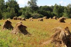 Pilhas do feno de Amish fotografia de stock royalty free