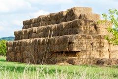 Pilhas do feno em um campo e em um céu azul Imagens de Stock Royalty Free