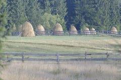 Pilhas do feno na Transilvânia Imagens de Stock Royalty Free