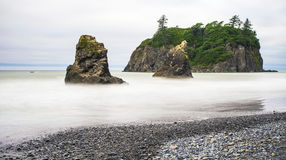 Pilhas do mar em Ruby Beach, Washington Imagem de Stock Royalty Free