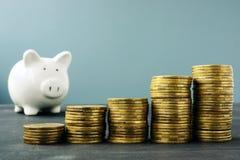 Pilhas e mealheiro da moeda Crescimento e plano de aposentação da riqueza imagens de stock royalty free