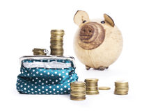 Pilhas múltiplas das moedas, carteira com, porco do dinheiro Fotografia de Stock