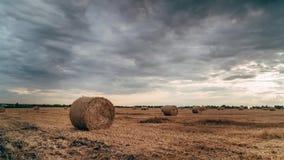 Pilhas redondas de palha no campo segado, timelapse vídeos de arquivo