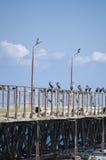 Pilier abandonné, la Mer Noire, Shabla Photo stock