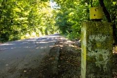 Pilier concret dans la forêt photo stock