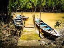 Pilier de jungle Photo stock