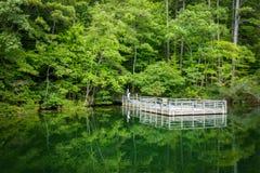 Pilier de pêche sur un lac Photographie stock