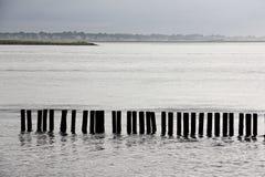 Pilier de pêche tôt le matin Photo libre de droits