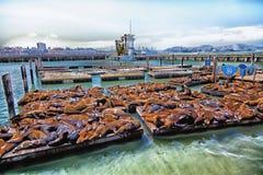 Pilier 39 de San Francisco Photographie stock libre de droits