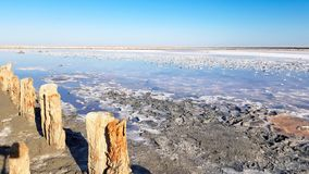 Pilier en bois de dérive sur une plage sablonneuse images libres de droits