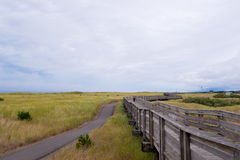 Pilier en bois entouré par l'herbe pour marcher le long de l'océan Photo stock