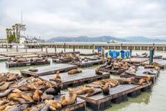 Pilier 39 en San Franacisco Photos libres de droits