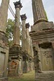 Piliers de Windsor Ruins, Mississippi Image stock