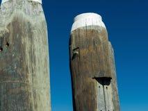 Piliers en bois sur un quai Photo libre de droits