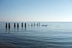 Piliers en mer Image libre de droits