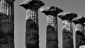 Piliers et colonnes grecs noirs et blancs Image stock
