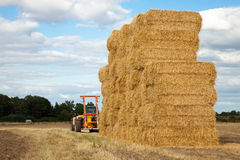 Piling hay bales on a summers day Royalty Free Stock Photo