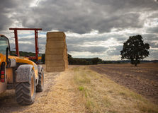 Piling hay bales on a summers day Stock Images