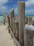 pilings fotografia stock