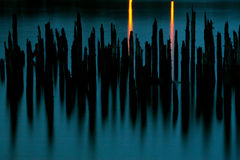 Pilings. On the Columbia River in Portland, Oregon Stock Photography