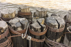 Pilings Central Park, New York City Royalty Free Stock Photos