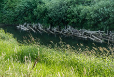 Pilings On The Green River royalty free stock image