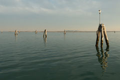 Pilings in the lagoon Stock Images