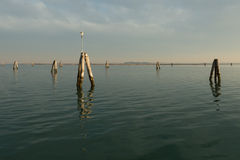 Pilings in the lagoon Royalty Free Stock Image