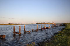 Pilings Stock Images