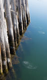 Pilings In Water Royalty Free Stock Image