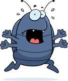 Pill Bug Panic Stock Photo