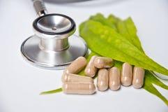 Pill från naturen på vit bakgrund Fotografering för Bildbyråer