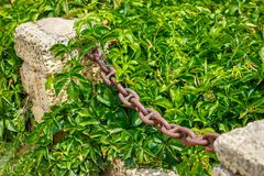 pillar with iron chain on grass background. industrial, royalty free stock image