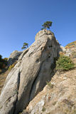 Pillar rock with tree, Crimea mountains.Landscape. Royalty Free Stock Photos