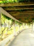 Pillar row in a garden Royalty Free Stock Images