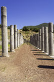 Pillar ruins of the ancient Greek city of Messinia, Peloponnese, Greece. Pillar ruins of the ancient Greek city of Messinia at Peloponnese, Greece Stock Photo