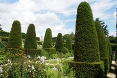 Pillar topiary garden in Chipping Campden, Gloucestershire, England Royalty Free Stock Images